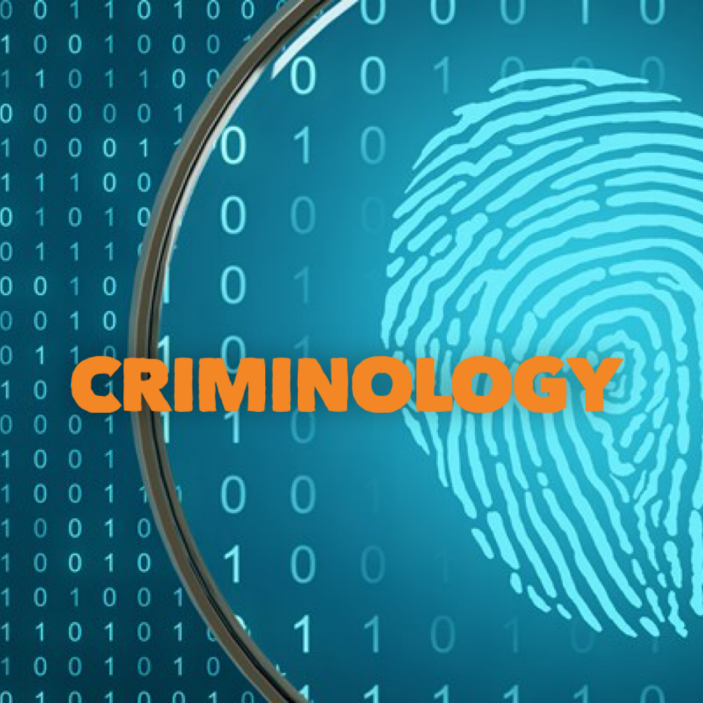 crime criminology